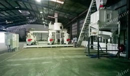 Wood Pellet Mill Plant in Malaysia