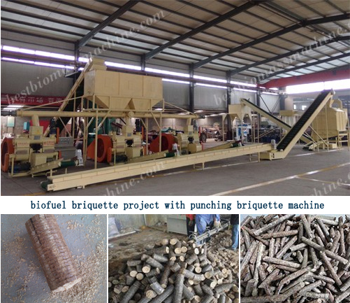 biofuel briquette project with punching briquette machine