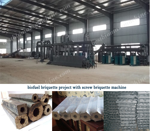 biofuel briquette project with screw briquette machine