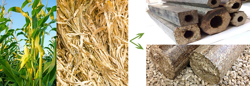 From Corn Straw to Briquettes
