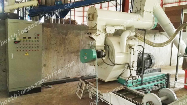 elephant grass pellet mill