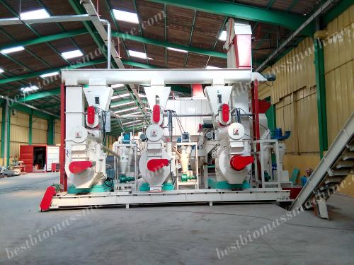 pellet mill for sawdust pellet production plant